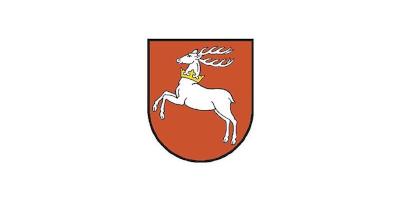 Regionalny Ośrodek Polityki Społecznej w Lublinie